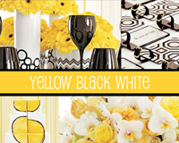 ����ҹ�觧ҹ����  Yellow Black & White