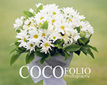 Cocofolio Photography
