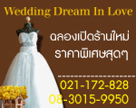 Wedding Dream InLove
