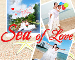 SEA OF LOVE Wedding Studio �ѵ�պ